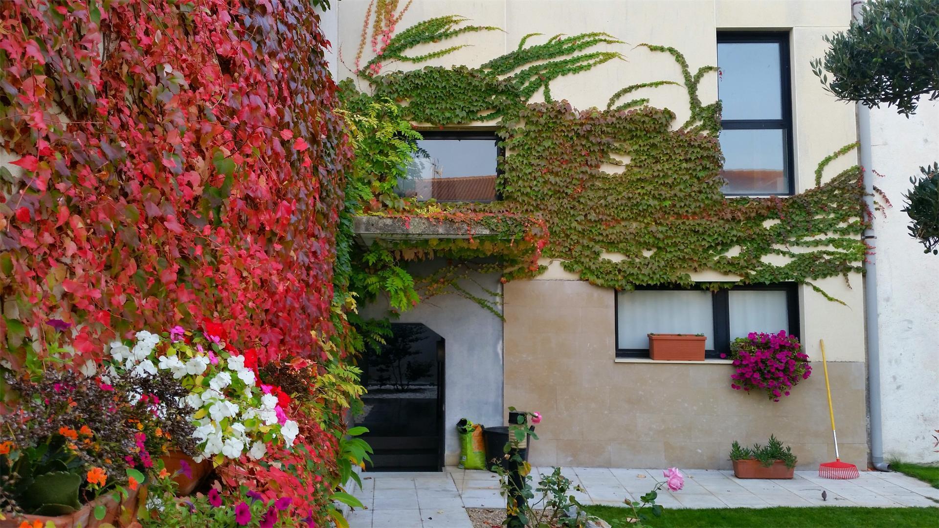 Requisitos Baño Minusvalidos:Pisos en venta, piso de 6 habitaciones de segunda mano en Navarra
