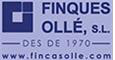 FINQUES OLLE