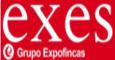 EXES INTERNACIONAL