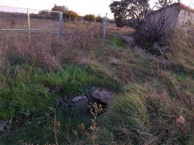 Terreno en Venta en Camino De Las Norias de Tudela
