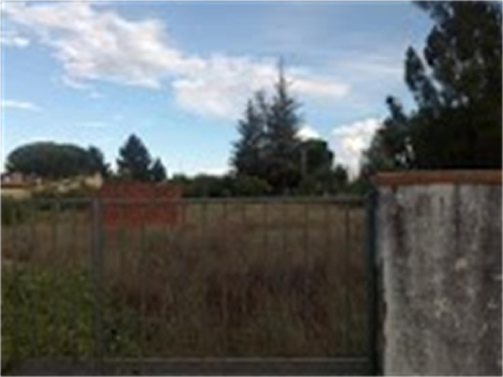 Terreno Urbanizable en venta en Calvarrasa de Abajo