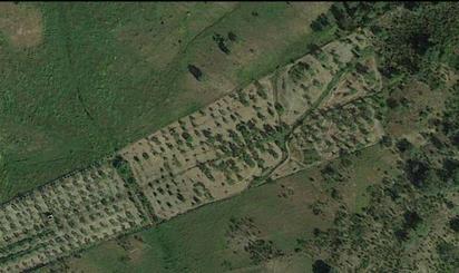 Grundstücke zum verkauf in Sanlúcar de Guadiana