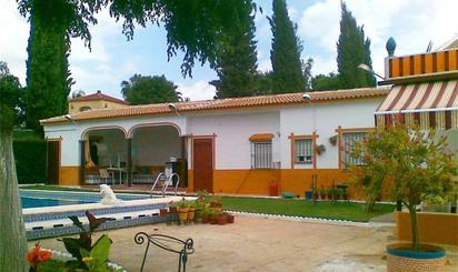 Casa o chalet de alquiler en Camino Camino las Cuadras el Vidiriero, 166, Aznalcázar