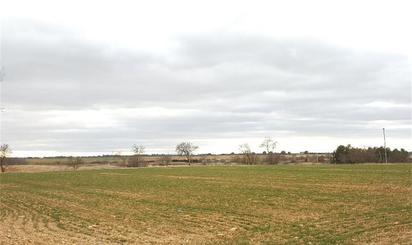 Terrenys en venda a Albacete Província