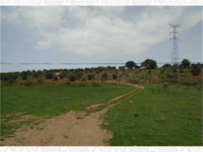 Foto 4 von Grundstück in  / Quer