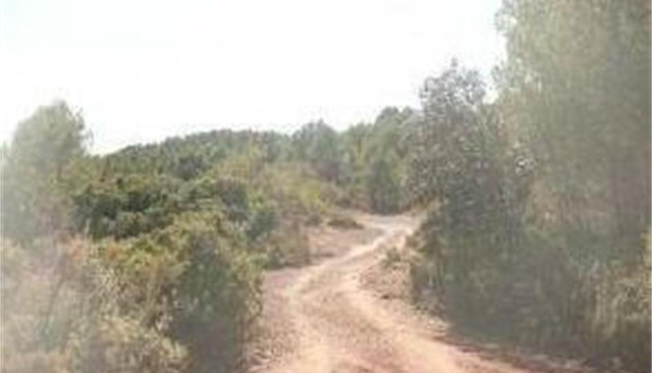 Foto 1 von Grundstücke zum verkauf in Fanzara, Castellón