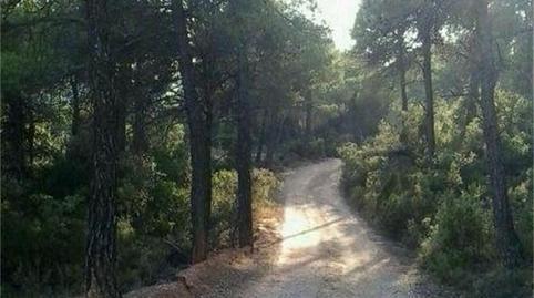Foto 5 de Terreno en venta en Beceite, Teruel