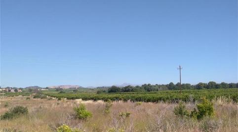 Foto 2 von Grundstücke zum verkauf in Fanzara, Castellón