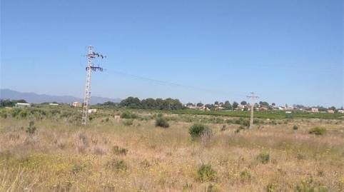 Foto 3 von Grundstücke zum verkauf in Fanzara, Castellón