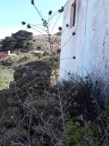 Venta De Pisos De Particulares En La Comarca De Isla De El
