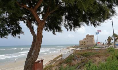 Pisos de alquiler baratos en Playa El Conde, Alicante