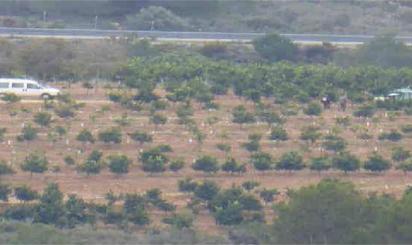 Terreno en venta en Benlloch