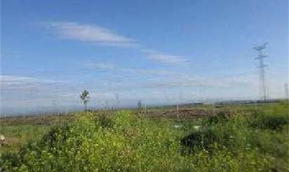 Land for sale in Casco Urbano