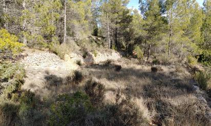 Terreno en venta en Peñarroya de Tastavins