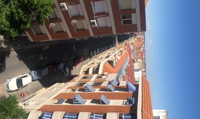 Plantas intermedias para compartir en Ciudad Real Provincia