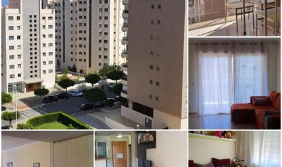 Apartamentos de alquiler con piscina en Villajoyosa / La Vila Joiosa
