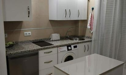 Viviendas de alquiler con calefacción en Monachil