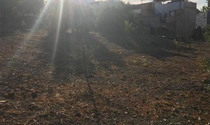 Lands for sale at El Carpio