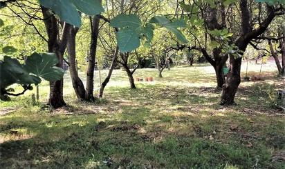 Terrenos en venta en Valle de Trápaga-Trapagaran