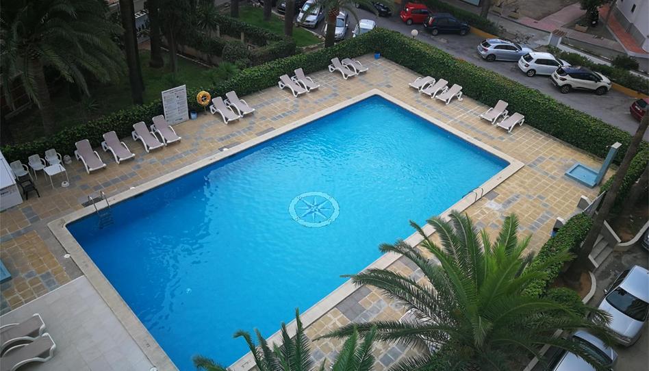 Foto 1 von Wohnung miete in Carrer Duc de L'estremera, 7 Magaluf - Palmanova - Badia de Palma, Illes Balears
