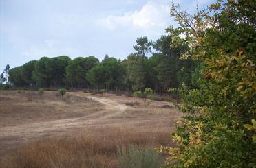 Grundstücke zum verkauf in Avenida de Extremadura, Villablanca