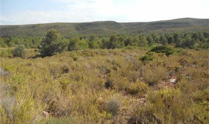 Grundstück in Casaktua zum verkauf in España