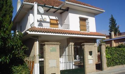 Viviendas y casas de alquiler con terraza en Valencina de la Concepción