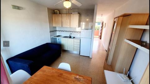 Foto 4 von Wohnung miete in Carrer Garrovers, 7 Peguera, Illes Balears