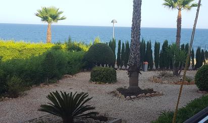 Apartamento de alquiler en Urbanización Mil P Ed Playa, Mil Palmeras