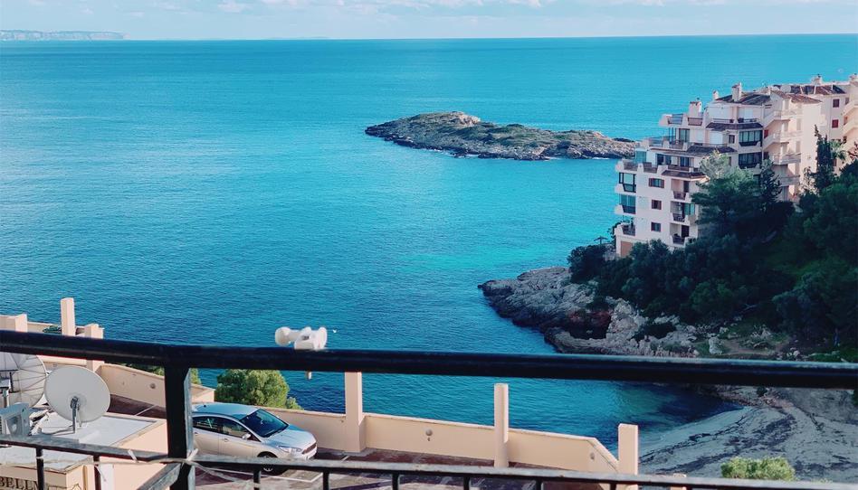 Foto 1 de Apartamento para compartir en Passeig Illetes Cas Català - Illetes - Portals Nous, Illes Balears