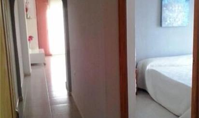 Apartamento de alquiler en Plaza C/gaviotas, Almoradí
