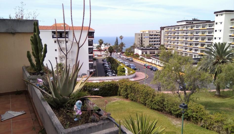 Foto 1 de Ático de alquiler en Calle de Los Robles, 3 Zona Botánico, Santa Cruz de Tenerife