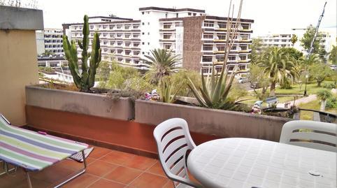 Foto 4 de Ático de alquiler en Calle de Los Robles, 3 Zona Botánico, Santa Cruz de Tenerife