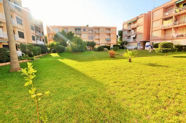 Wohnungen zum verkauf in Avinguda de S'albufera, Muro
