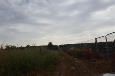 Terreno en venta en Huévar del Aljarafe