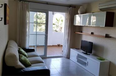 Apartamento de alquiler en Plaza Bitacora, 3,  Almería Capital