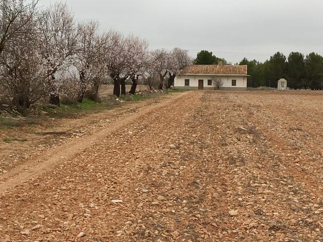 Terreno en Venta en Cv-C4 de Villarrobledo, Terren
