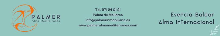 PALMER INMOBILIARIA