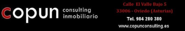 COPUN CONSULTING INMOBILIARIO
