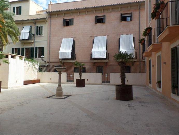 Foto 1 de La Llotja - Sant Jaume, Centre ( Palma de Mallorca)