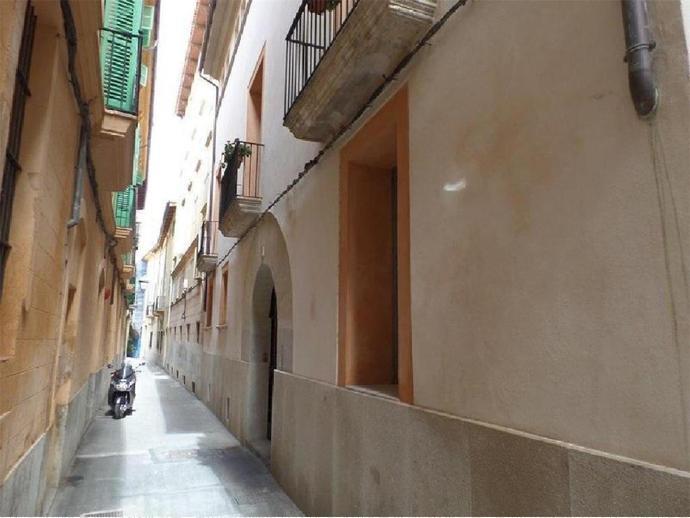 Foto 4 de La Llotja - Sant Jaume, Centre ( Palma de Mallorca)
