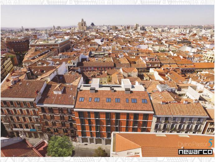 Photo 11 of Street Divino Pastor, 5 / Universidad - Malasaña, Centro ( Madrid Capital)