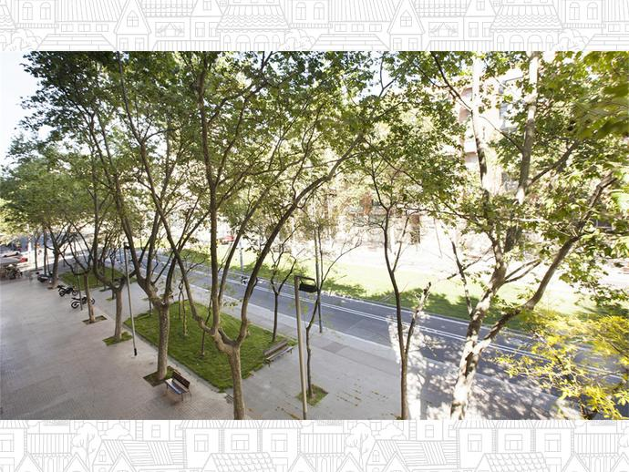 Foto 8 de El Parc i la Llacuna del Poblenou, Sant Martí ( Barcelona Capital)