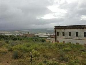 New home Bornos