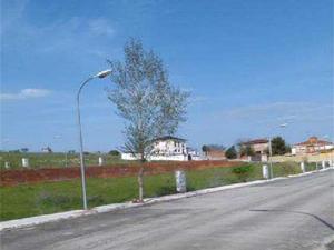 Neubau Los Cerralbos
