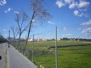 Neubau Chucena