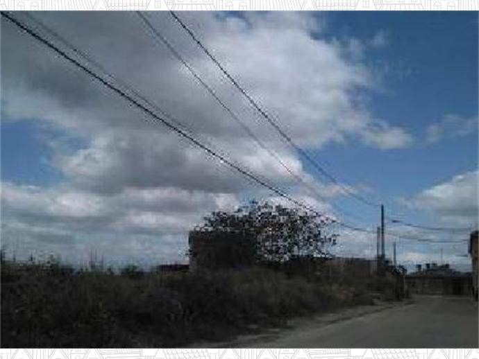 Photo 2 of Agoncillo