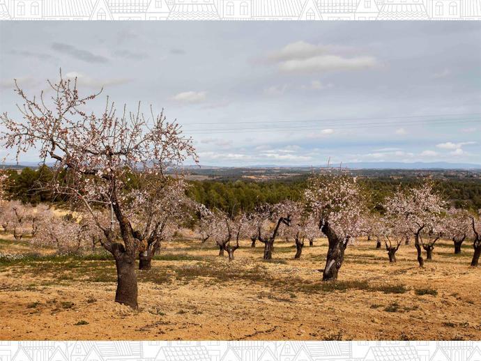 Foto 44 von Maisonette in  / Venta del Moro