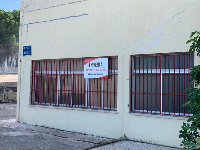 Foto 2 von Torredonjimeno