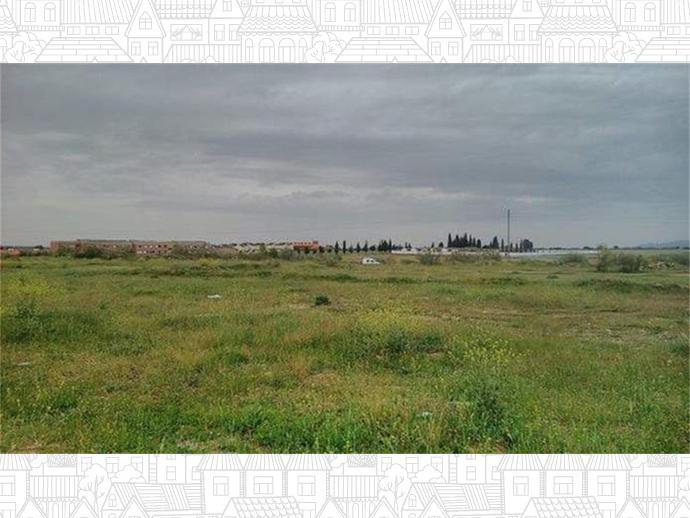 Foto 4 von C/ San Marcos, nº 1-7,  / Escalona
